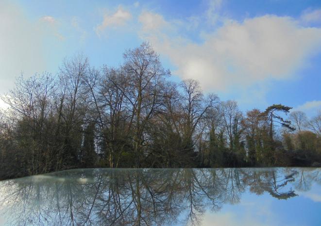 Photo reflet